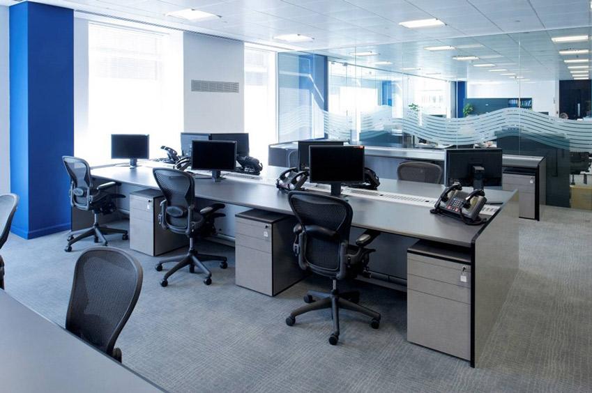Contemporary Office Environment